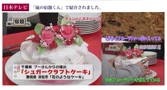 日本テレビ『嵐の宿題くん』
